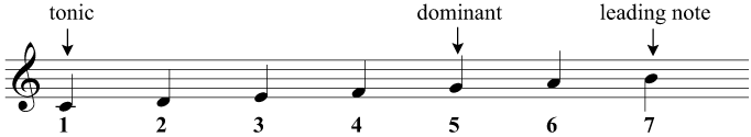 The tonic, dominant, and leading note in C major